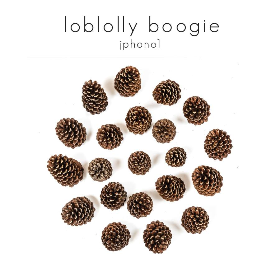 loblolly boogie cover